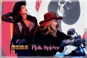 Pink Spider PV Short