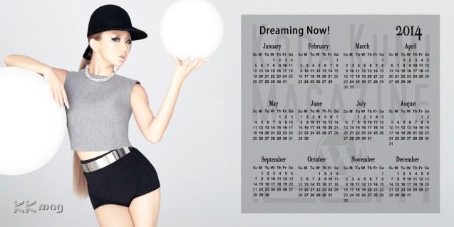 Koda Kumi Calendar 2014